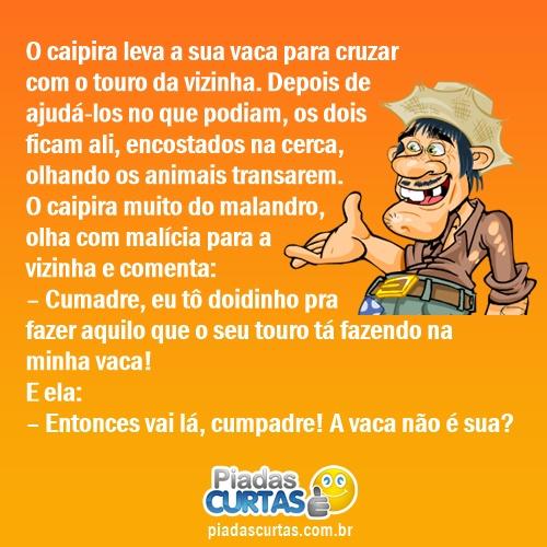piada-whatsapp-25