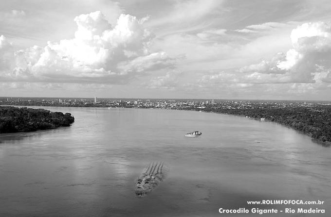 rondonia-crocodilo gigante visto no rio madeira-rolim fofoca